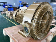 11KW High Pressure Side Channel Blower For Pneumatic Conveying Waste Water Treatment Aquaculture